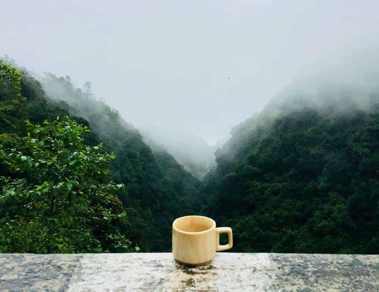caffeine-coffee-cup-641038-1954712-4545445-9549650