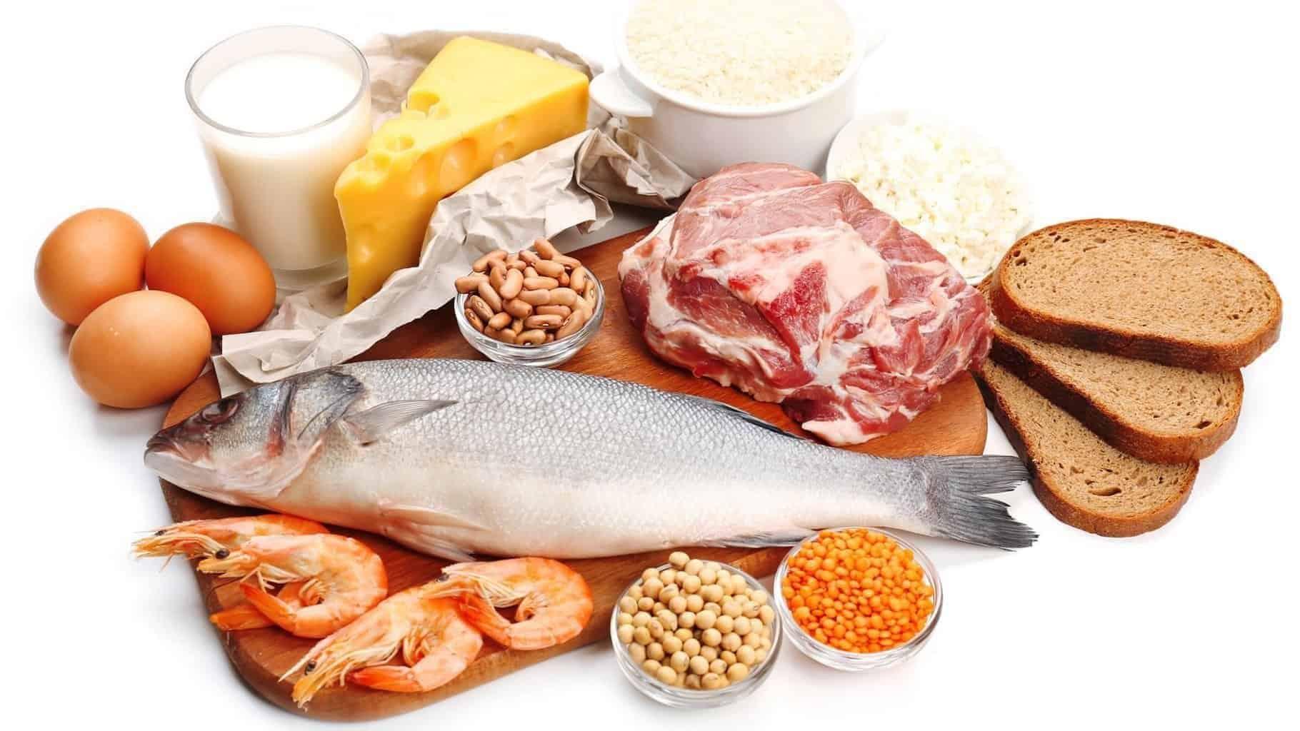 alimentos-con-proteinas-5081753-1802134-9108541