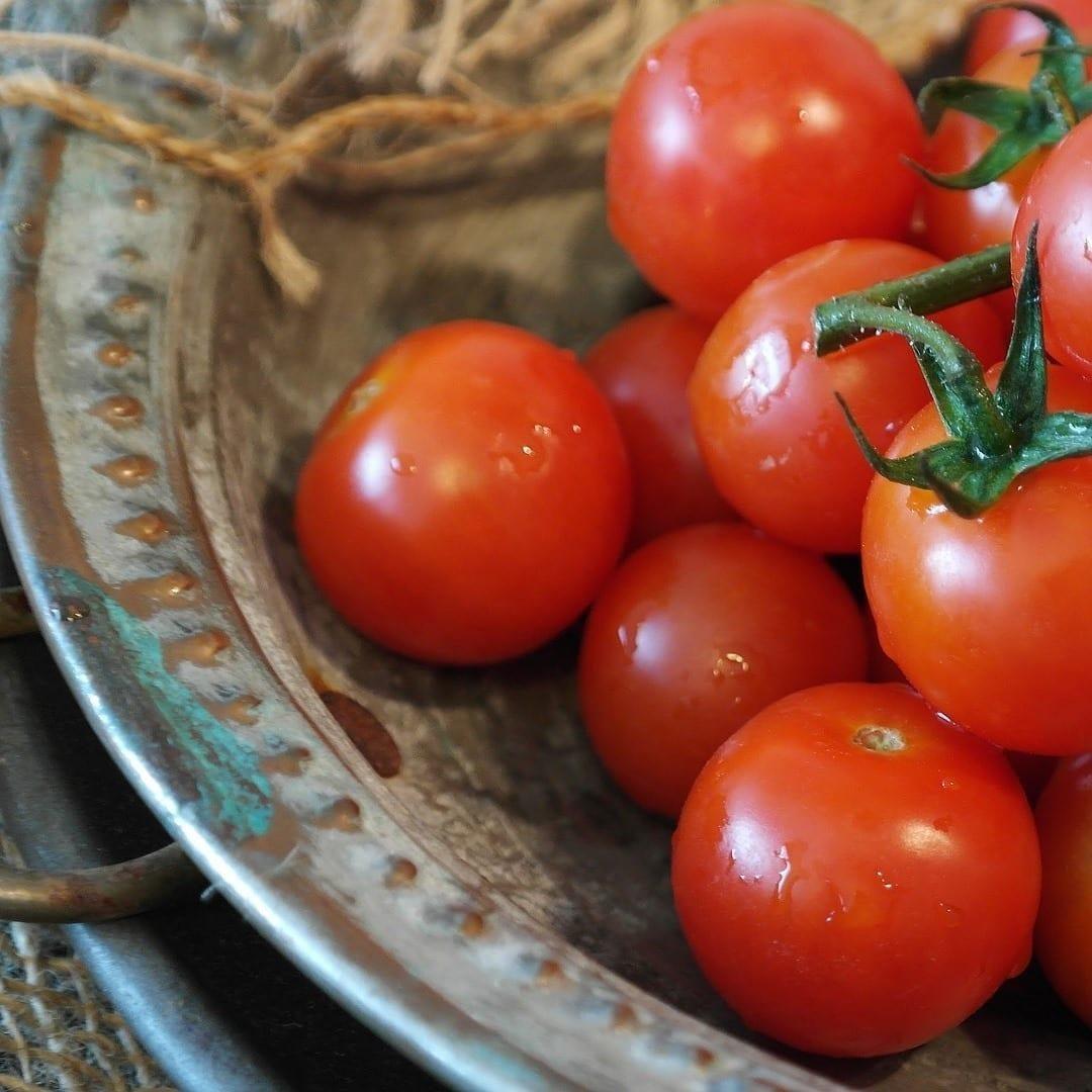 tomatoes-2559809_1920-3263260-5813206-2802896